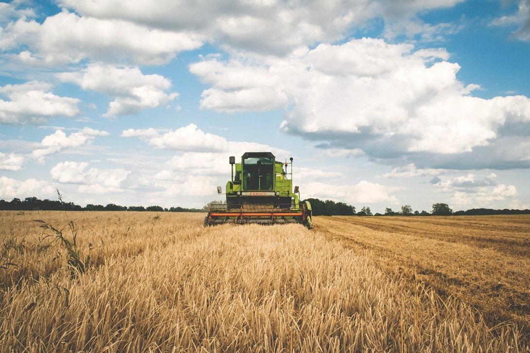 agricultura, combina, lan de grau