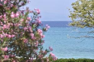 Peninsula Kassandra, regiunea Halkidiki, Grecia