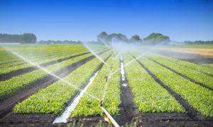 Ssitem-de-irigatii-agricultura