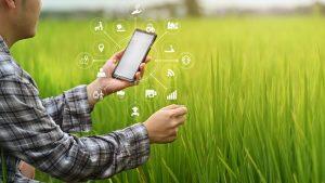 agricultura, fermier, tehnologie, telefon